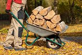 picture of borrower  - A man with a pile of wood logs on a borrow - JPG