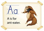 stock photo of ant-eater  - Illustration of a flashcard with letter A - JPG