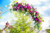 picture of carnations  - Arch for the wedding ceremony - JPG