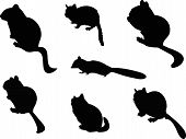 pic of chipmunks  - The Chipmunk Silhouettes includes seven individual animal graphics - JPG