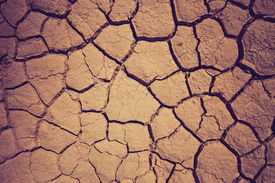picture of drought  - Dry soil during the drought - JPG