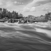 picture of water bug  - landscape with Southern Bug river black and white picture - JPG