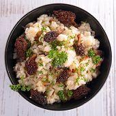 stock photo of morel mushroom  - mushroom risotto - JPG