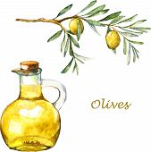 pic of olive branch  - Watercolor illustration with green olive branch and olive oil in the bottle - JPG