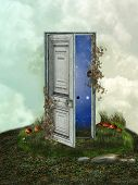 image of fantasy  - Fantasy Landscape in the grass with door - JPG