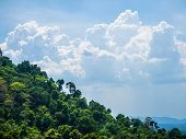 foto of cloud forest  - Tropical forests and clouds cape in Thailand - JPG