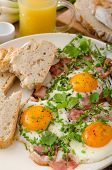 picture of redneck  - Spring omelette with bacon egg and herbs homemade rustical bread  - JPG