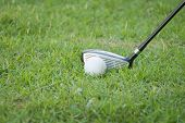 image of disadvantage  - Close up golf ball on green grass about ready to drive golf - JPG
