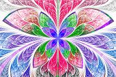 picture of symmetrical  - Multicolored symmetrical fractal pattern as flower or butterfly in stained - JPG