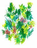 foto of jungle exotic  - central botanical design - JPG