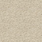 pic of flaxseeds  - Flaxseed knitted fabric - JPG