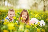 picture of orchard  - Girl lying with the boy in a blossoming orchard - JPG