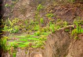 foto of karakoram  - Idyllic Mountain Valley in Northern area of Pakistan  - JPG