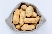 pic of groundnut  - Isolated peanuts  - JPG