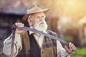 picture of scythe  - Old farmer with scythe taking a break from mowing the grass - JPG