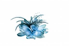 picture of brooch  - Fashion hair accessories and brooches made of colorful feather on white background - JPG