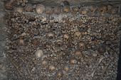picture of catacombs  - photo taken in the catacombs of Paris - JPG