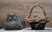 Постер, плакат: Basket with Easter eggs