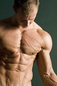 stock photo of muscle man  - Muscular body builder showing muscles - JPG