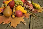 image of cornucopia  - Cornucopia filled with fall harvest spilling out of it - JPG