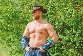 Macho Six Packs Torso Wear Rustic Style Clothes And Cowboy Hat. Strong And Confident Cowboy. Owner O poster