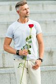 Red Rose Is A Symbol Of Love. Handsome Man Holding Rose Gift For Special Occasion. Caucasian Guy Wit poster
