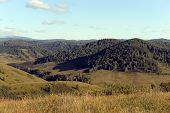 Russia.western Siberia. The Foothills Of The Altai Mountains poster