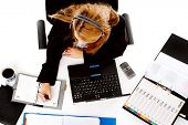foto of multitasking  - busy woman working at her desk - JPG