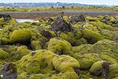 The Spectacular Landscape Of Eldhraun Lava Moss Field In Iceland. This Impressive Lava Field The Big poster