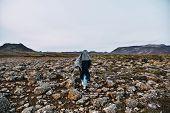 Girl Walks On The Lava Floor. Magical Mossy Lava Field. Iceland. Summer. Sunset poster