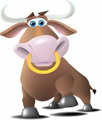 foto of nose ring  - A bull with a ring in his nose in a charging or a proud pose - JPG