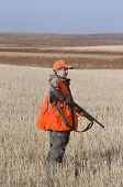 pic of ringneck  - Pheasant Hunting in the Autumn in North Dakota - JPG