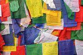 foto of darjeeling  - Buddhist prayer flags in Darjeeling - JPG