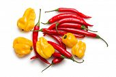 top view of red chili peppers and yellow habanero on white background