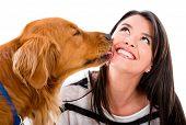 foto of tongue licking  - Cute dog kissing a woman  - JPG