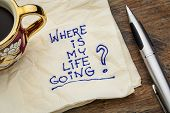 where is my life going - an essential question or searching for purpose  - a napkin doodle with a cu