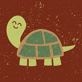 picture of carapace  - Cute turtle - JPG