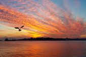 picture of constantinople  - Setting sun fired up the sky and all Bosphorus waters - JPG