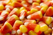 picture of sweet-corn  - Colorful Candy Corn for Halloween on a Background - JPG