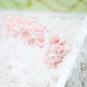 stock photo of fingers legs  - Little fingers - JPG