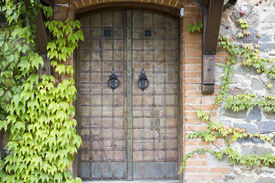 stock photo of entryway  - Old door in a stone wall covered with wild grapes. ** Note: Visible grain at 100%, best at smaller sizes - JPG