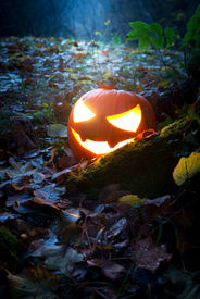 image of jack-o-laterns-jack-o-latern  - Glooming pumpking halloween latern with lit candle on tree root with fallen leaves around - JPG