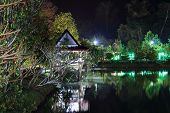 image of vegetation  - lighted gazebo is reflected in the water the night of the lake on the background vegetation - JPG