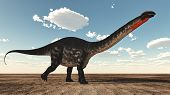 stock photo of apatosaurus  - Apatosaurus dinosaur standing in the desert  - JPG