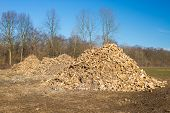 foto of discard  - Piles of wooden fresh mulch outdoors on field discard of timber industry - JPG