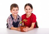 stock photo of pot plant  - Smiling children caring for potted plant - JPG