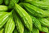 stock photo of bitter melon  - Bitter melon Momordica charantia on Asian market vertical background - JPG