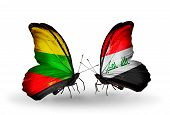 image of iraq  - Two butterflies with flags on wings as symbol of relations Lithuania and Iraq - JPG