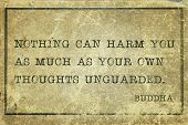 pic of buddha  - Nothing can harm you as much  - JPG