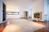 picture of carpet  - Big soft carpet on wooden floor in spacious living room - JPG